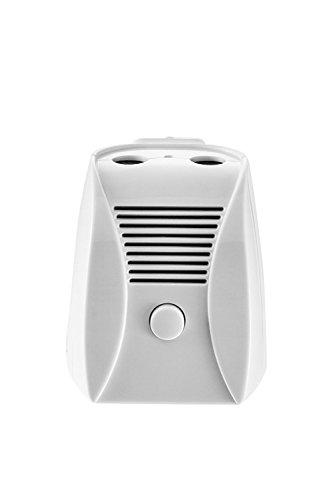 Hokone Ionic & Ozone Air Purifier,EP202 Odor Allergies Eliminator