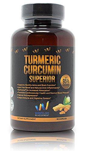With 95% Curcuminoids + Ginger Root Extract & Shiitake